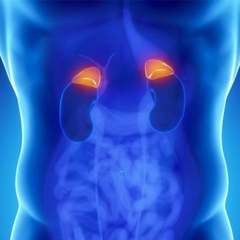 високо кръвно налягане - Diagnozata